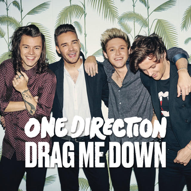 one direction, drag me down